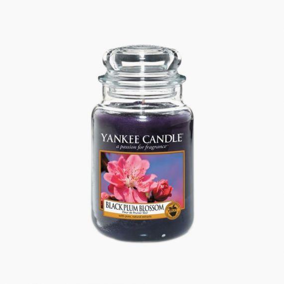 Black Plum Blossom Bougies Jarres