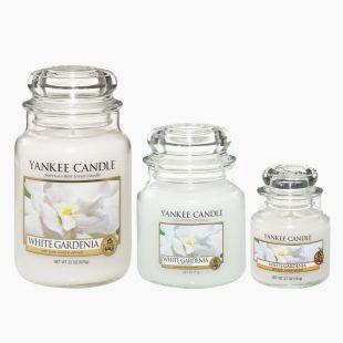 White Gardenia Bougies Jarres