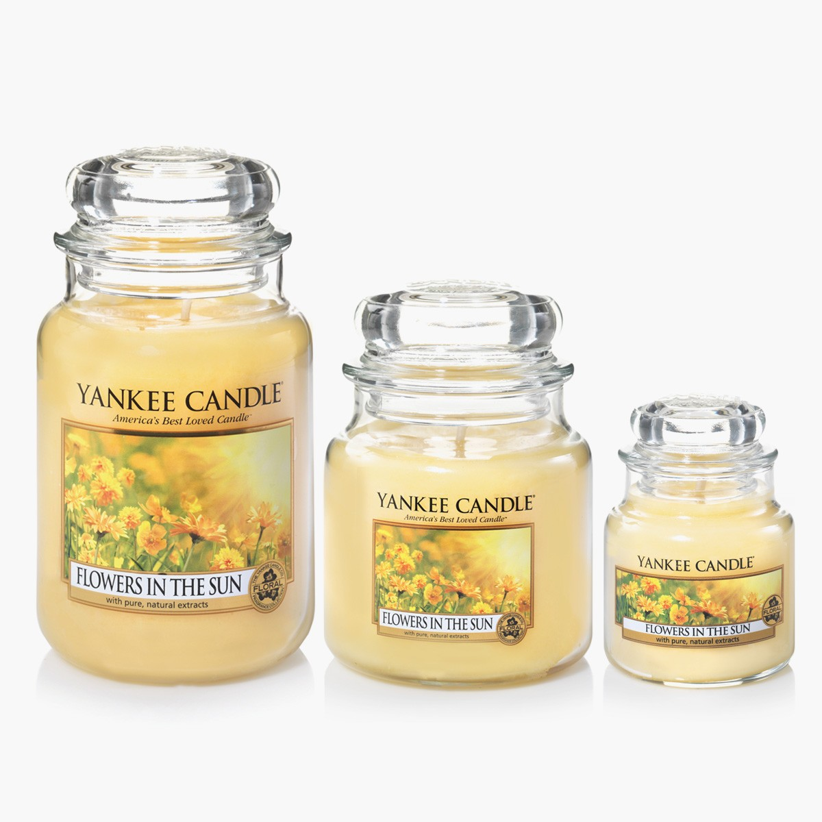 yankee candle bougies jarres flowers in the sun. Black Bedroom Furniture Sets. Home Design Ideas
