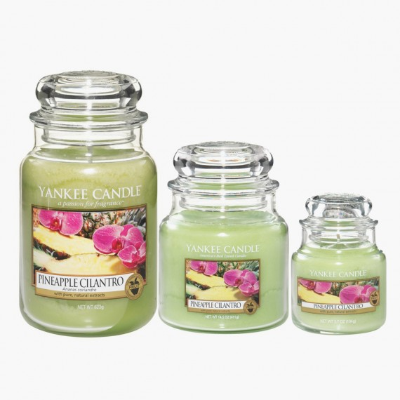 Bougie Petite Jarre Pineapple Cilantro Yankee Candle