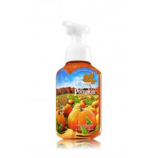 Acheter Bath And Body Works Sweet Cinnamon Pumpkin