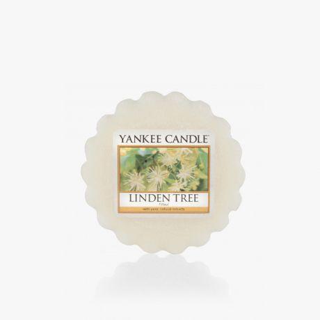 Linden Tree Tartelette