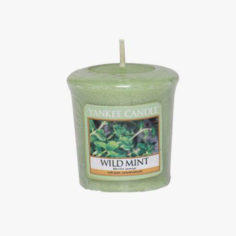 Wild Mint Votive