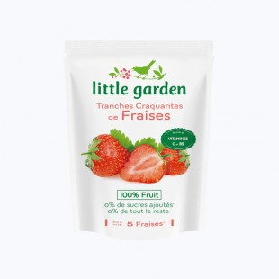 Little garden Fraise