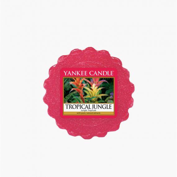 Tropical Jungle Tartelette