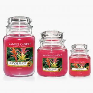 Tropical Jungle Bougies Jarres