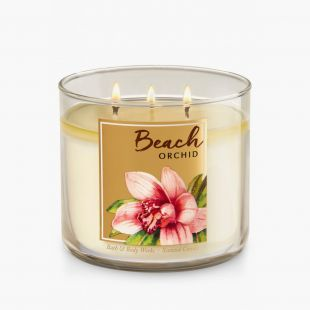 Beach Orchid Bougie 3 Mèches