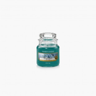 Icy blue spruce Bougies Jarres