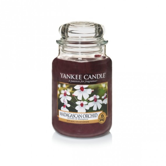 Yankee Candle Petite Jarre Madagascan Orchid