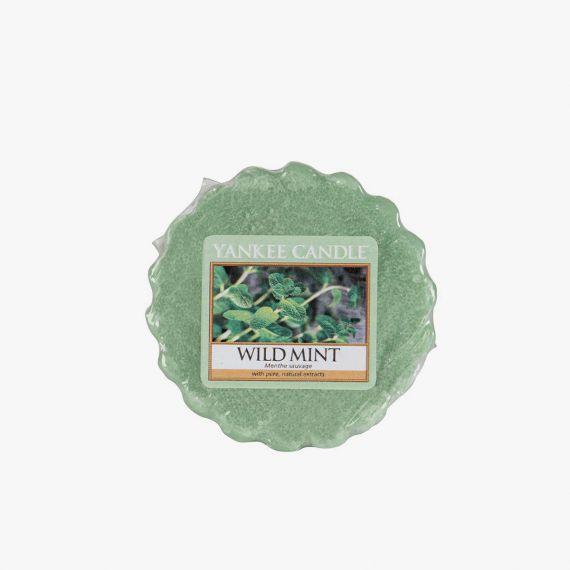 Wild Mint Tartelette