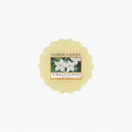 Tobacco Flower Tartelette