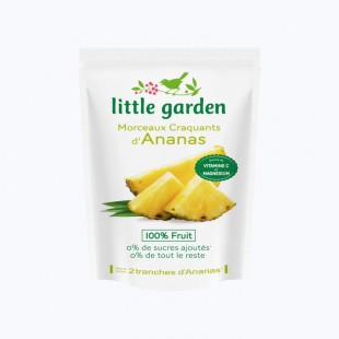 Little garden Ananas