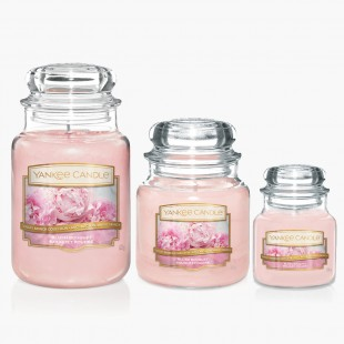 Blush bouquet Bougies Jarres