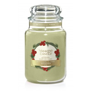 Bayberry Grande Jarre Yankee Candle