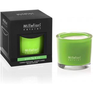 Bougie Parfumée Natural Green Fig & Iris 180g