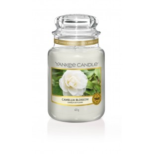 Camelia Blossom Jarres Yankee Candle