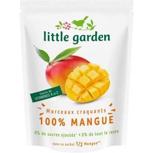 Little Garden Mangue