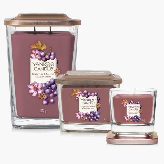 Grapevine & saffron Elevation