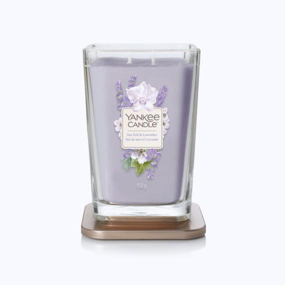 Sea salt lavender Elevation