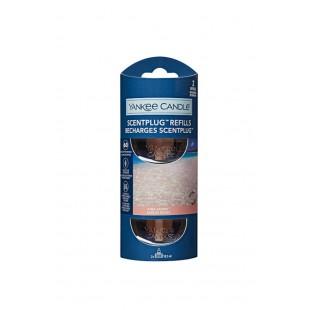 Pink Sands ScentPlug Recharge