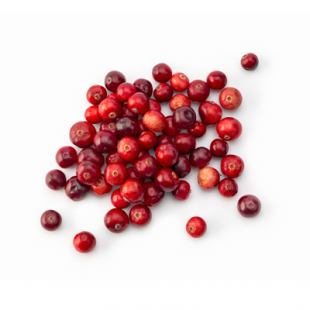 Canneberges fraiches / Cranberries